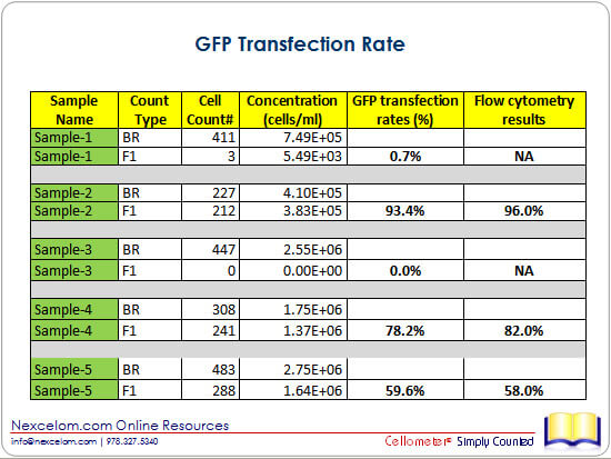 GFP Transfection Rate