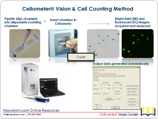 Cellometer Vision Counting Method