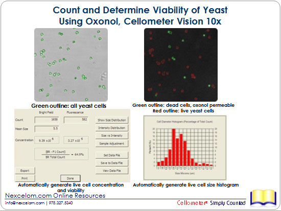 Count and Determine Viability of Yeast Using Oxonol, Cellometer Vision 10x
