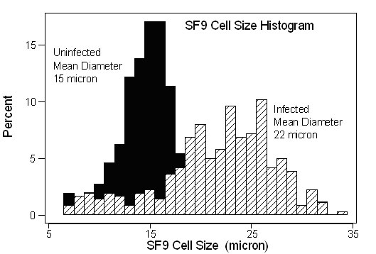 Cell size histogram of SF9 cells before and after infection