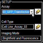 select gfp transfection assay