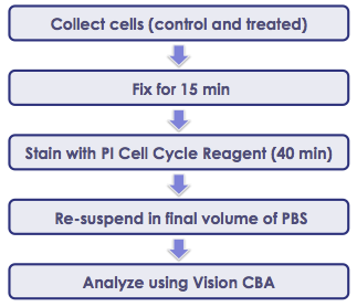 Sample preperation for PI cell cycle analysis