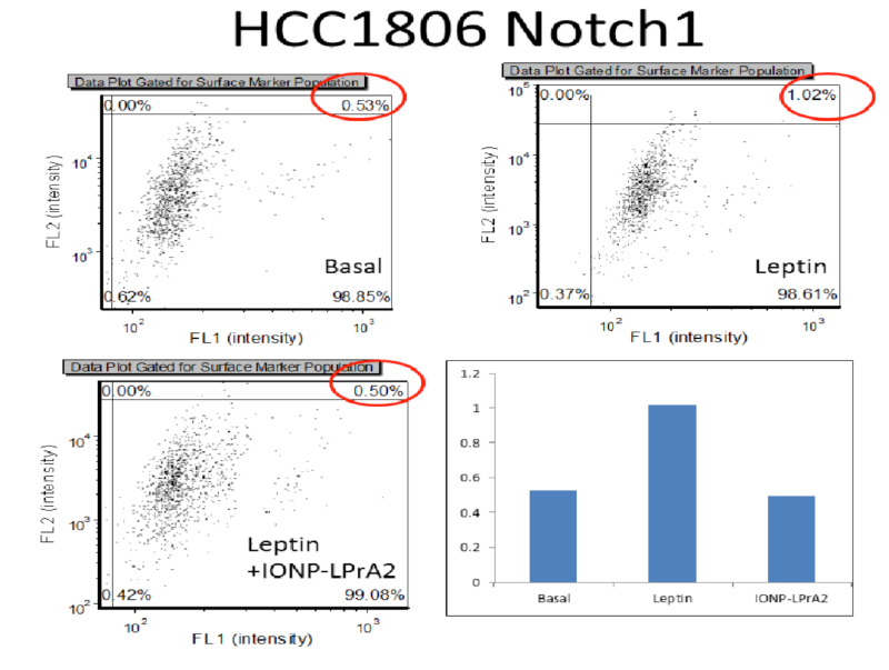 ION-LPrA2 blocked the effect of leptin on HCC1806 cells
