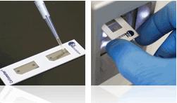 Cellometer Analysis - Cellometer K2, cell viability counter
