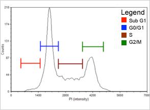 0.06 µM Etoposide