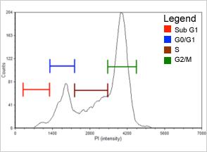 0.12 µM Etoposide