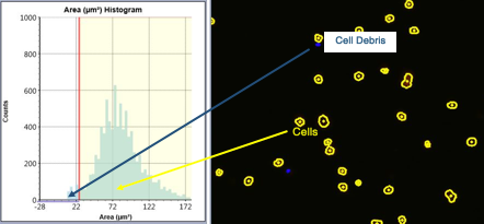 Celigo 2D histograms cell population