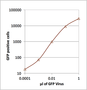Number of Lentivirus Infected Cells