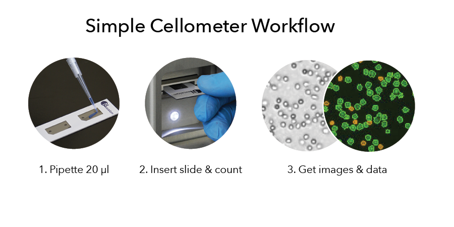 Cellometer simple workflow for CAR T