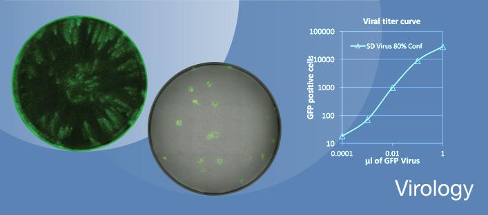 Assays for Virology Research