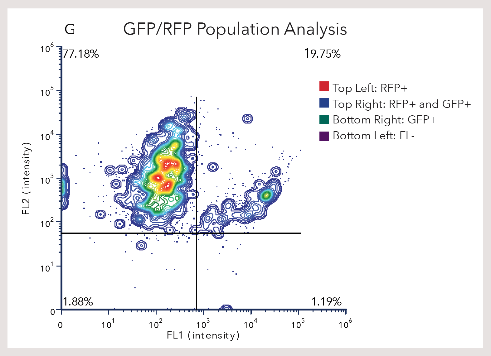 GFP/RFP Population Analysis