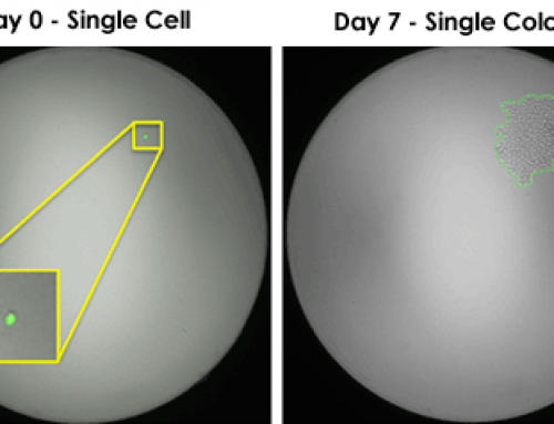 Celigo Provides Image-Based Proof of Single-Cell Clonality