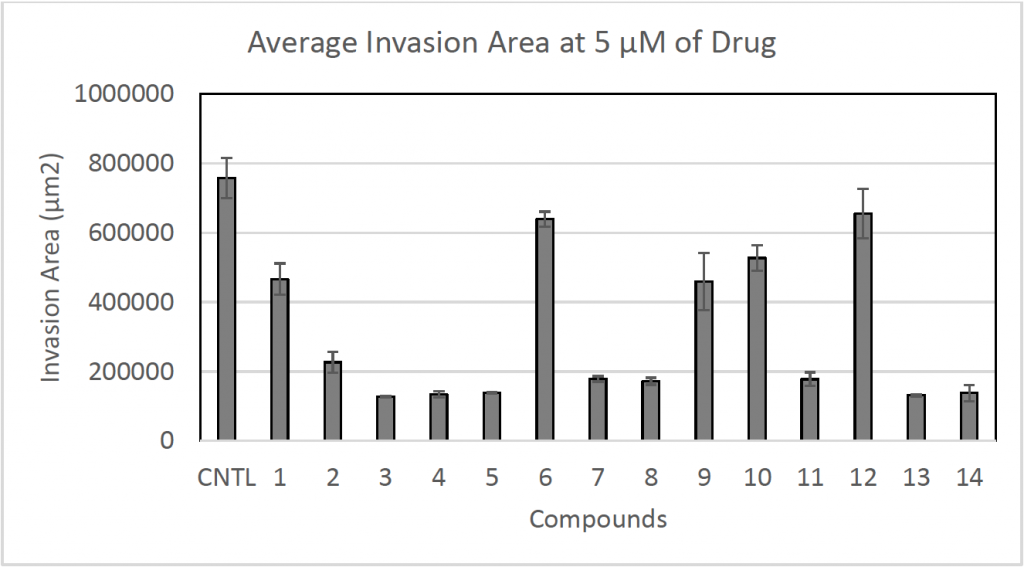 Average Invasion Area at 5 µM of Drug