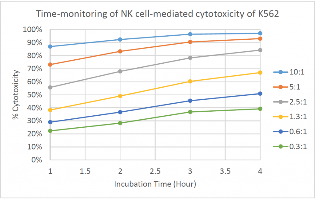 time monitoring of cytotoxicity k562