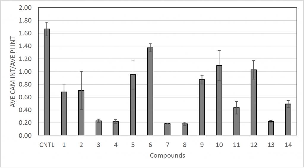 calcein AM/PI fluorescent intensity ratios