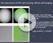 direct high-throughput cell counting in immuno-oncology