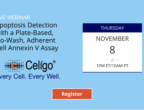 Live Webinar: Apoptosis Detection with a Plate-Based, No-Wash, Adherent Cell Annexin V Assay