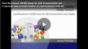 AO/EB assay principal video