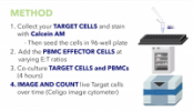 PBMC Mediated Cytotoxicity Using Celigo Image Cytometry