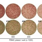 PBMC maximal density for ELISpot is shown