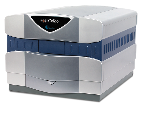Celigo live cell imager for immunotherapy