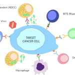 target cancer cell illustration