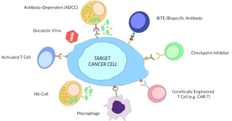 immunotherapy illustration
