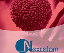 Webinar Solid Tumors