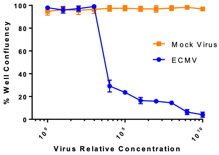confluence % viral titer curves