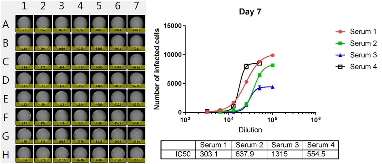dilution dependent neutralization plot AF647
