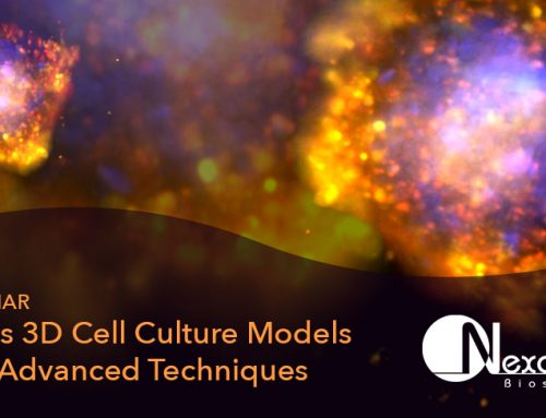 Webinar on Demand: 2D vs 3D Cell Culture Models and Advanced Techniques