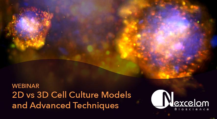 2D vs 3D Cell Culture Models and Advanced Techniques