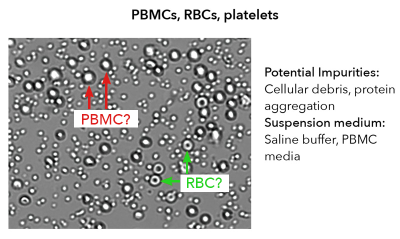 cell sample composition image