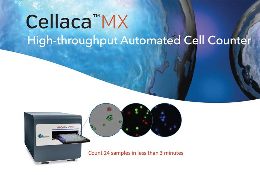 High-throughput cell counter
