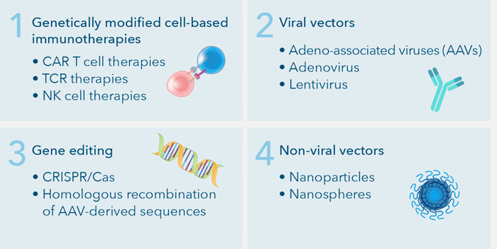 four main types gene therapy