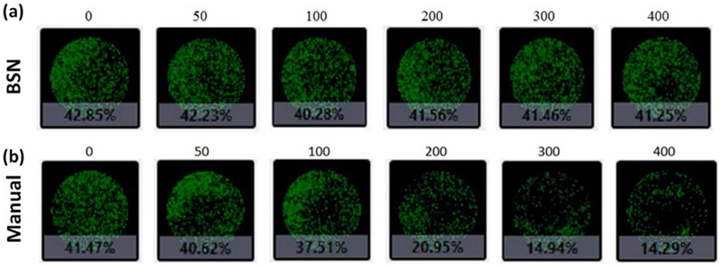 96-well plate confluence analysis using image cytometry