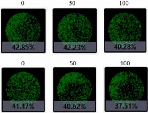 Cold-chain Storage Optimization for Umbilical Cord Human Mesenchymal Stem Cells